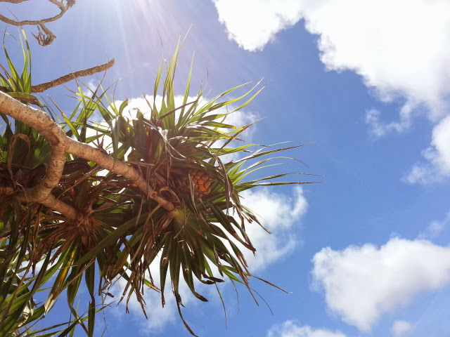 沖縄の青空 とろけるアーユルヴェーダ